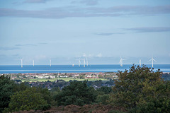 Looking out to the windfarms from Thurstaston