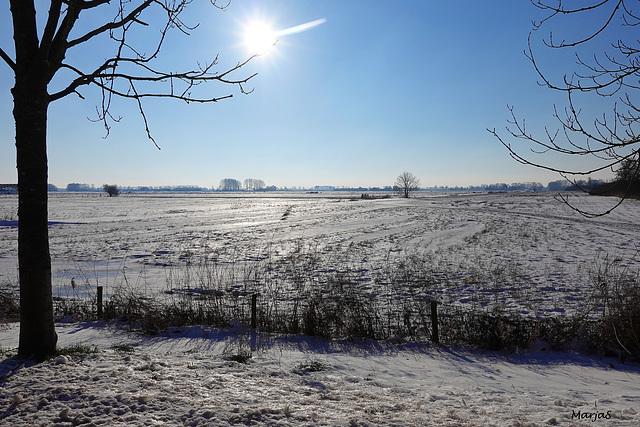 Sneeuw februari 2021