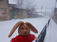 """""""Going out for carrots - may be some time"""".  HFF!"""
