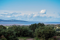 The Dee estuary and the coast of wales from Thurstaston