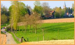 our lovely landscape