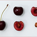 cherry dissection