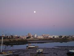 Evening moonlight.