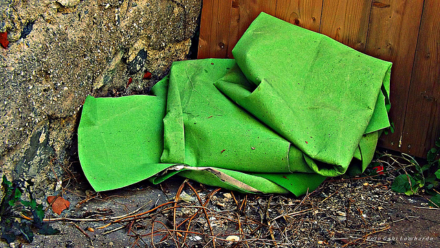 a green trash
