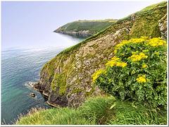 Great seascape: Kinsale's cliffs