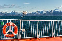 Arctic Umiaq Line