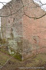 Le Wasenbourg près Niederbronn