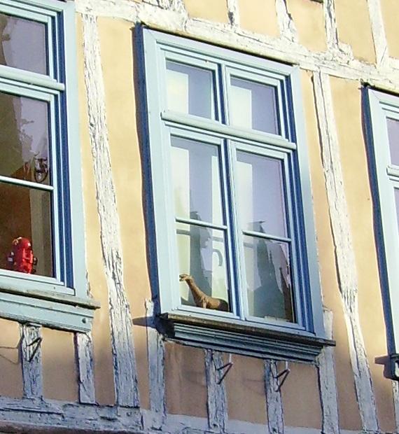 W like WINDOW