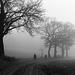 foggy runners