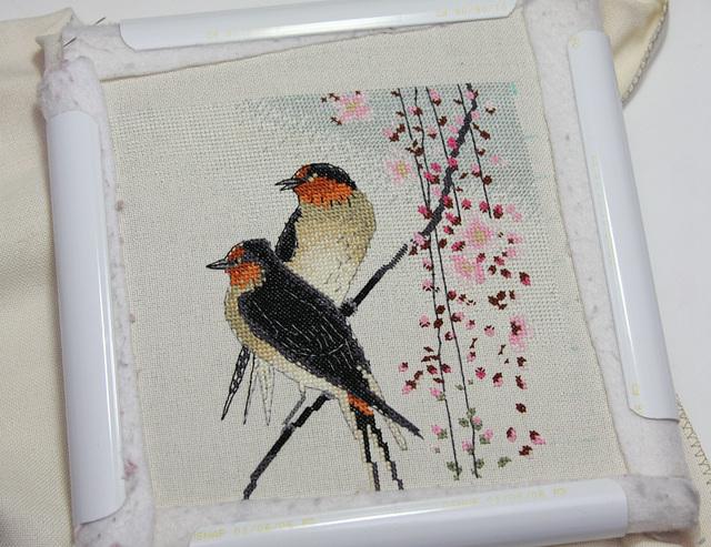 Swallows 7/16/2017