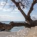 20160327 0595VRAw [I] Am Strand, Raum Messina, Sizilien
