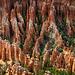 Forest of Hoodoos