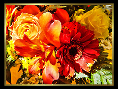 Wish everyone a beautiful Sunday. ©UdoSm