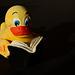 Bücher-Ente sucht den Frühling