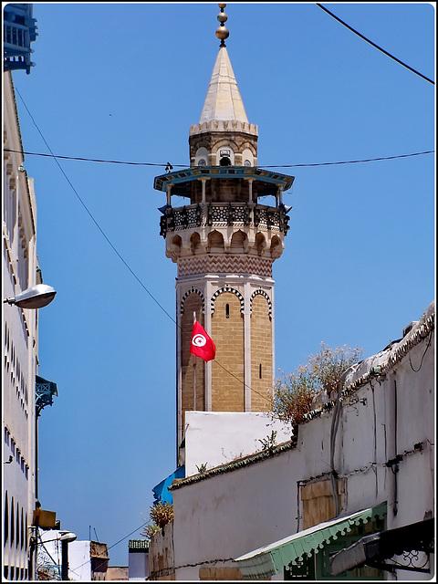 Tunisi : la Mosque Sidi Youssef sopra la Medina
