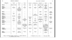 Bastien, Etimologia Leksikono, 1907