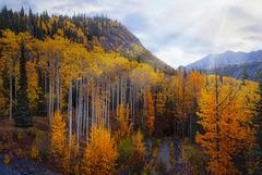 Chugach Mountain Autumn