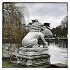 Lion at Kew