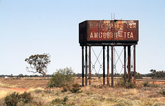 Amgoorie Tea