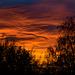 Tonight's Sunset #3 of 3 (16:35)