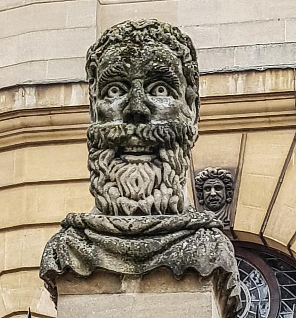 An Oxford head