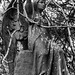 Angel, Cathcart Cemetery, East Renfrewshire