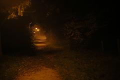 Dunkelnebelweg
