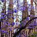 #3 - la Sagrada Familia (380)