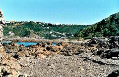 Houghton Bay, Wellington