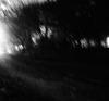 sentier nocturne