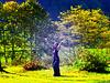 La respiration du ciel et de la Terre