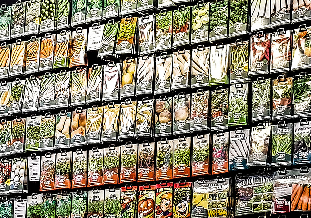 Seed packets in Oxford