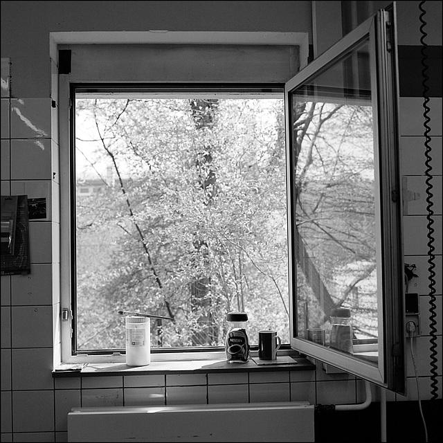 Wuppertal 187,5 x 75 cm