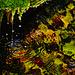 Dorfbrunnen - Village Fountain - Fountaine du village - Please view on black!