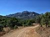 Silver Peak & Mount Sceloporus
