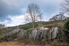 Welsh landscapes35