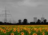 Energiewende - Energy Turnaround - Transition énergétique
