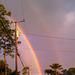Rainbows35