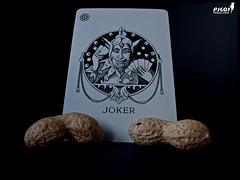 JOKER-LAP
