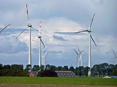 Windpark an der Unterelbe