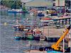 Victoria : un dettaglio del porto naturale - un disordine ordinato