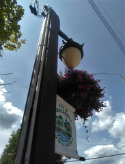 Vue électrique sur lampadaire de bouquet de la rue