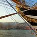 Amerigo Vespucci nel porto di Genova
