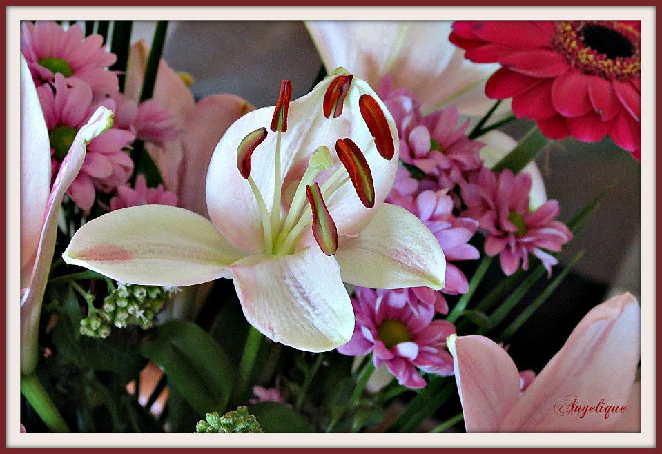 Bonne journée et bon WE à tous !  bonne fête aux