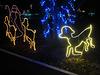 Christmas Lights Tmba Lions 2019 5986