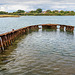 Forton Lake - wrecks