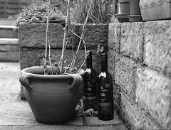 Garden corner with wine bottles