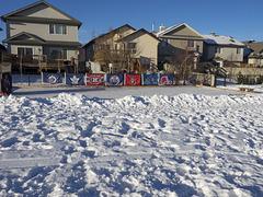 Community Hockey Rink