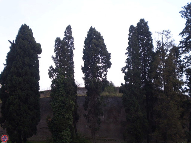 Emperor Augustus Mausoleum.