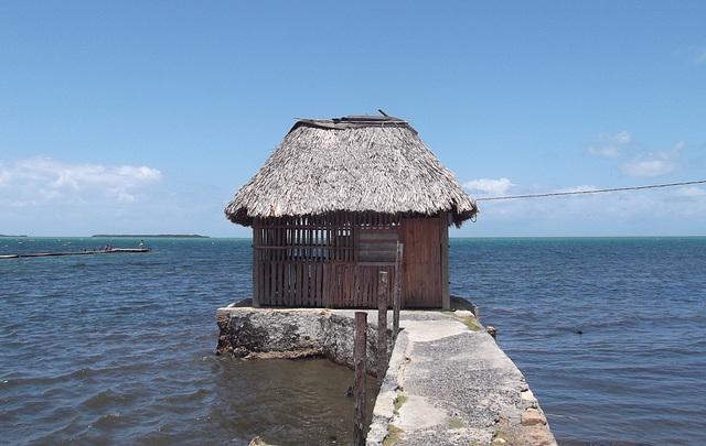Cabane de plage / Beach shack